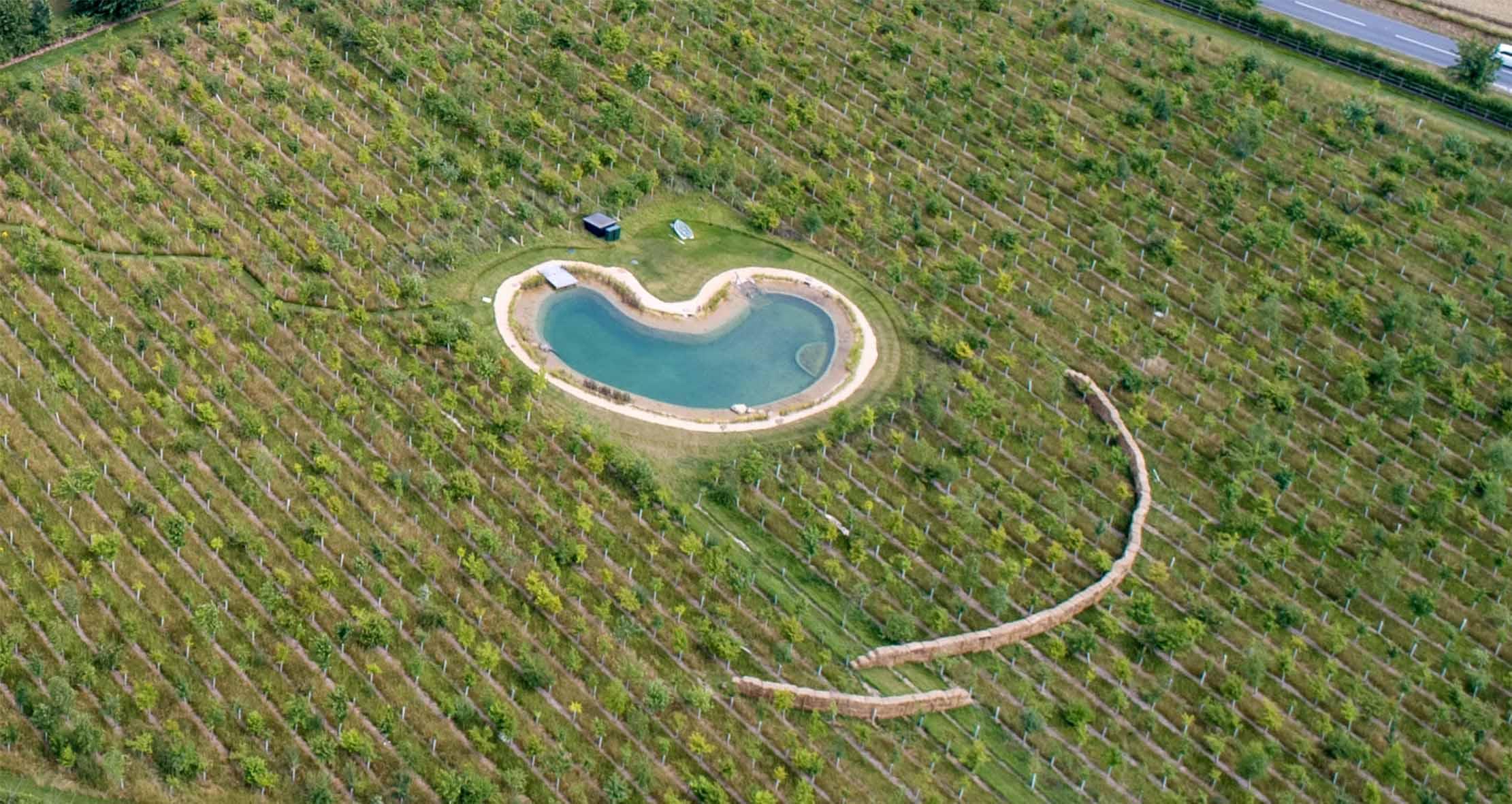 La piscina costruita nella tenuta di Ed Sheeran