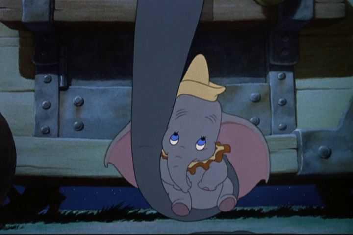 Dumbo Fonte:Disney wiki fandom
