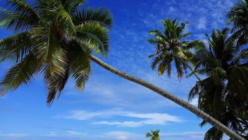 concorso per vincere un viaggio alle maldive