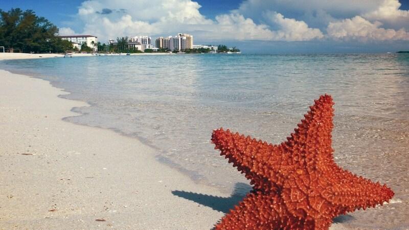 vinci un viaggio alle bahamas