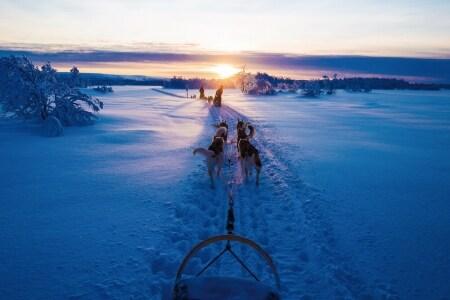 video viaggio lapponia finlandese