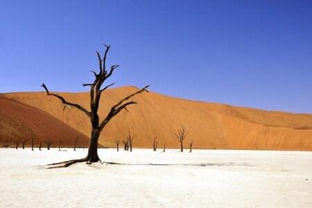 concorso per vincere biglietti aerei per la Namibia