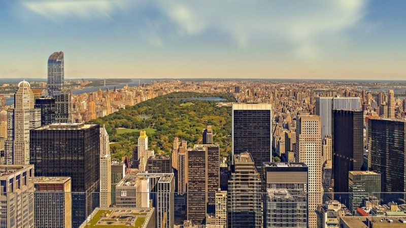 vinci viaggio new york