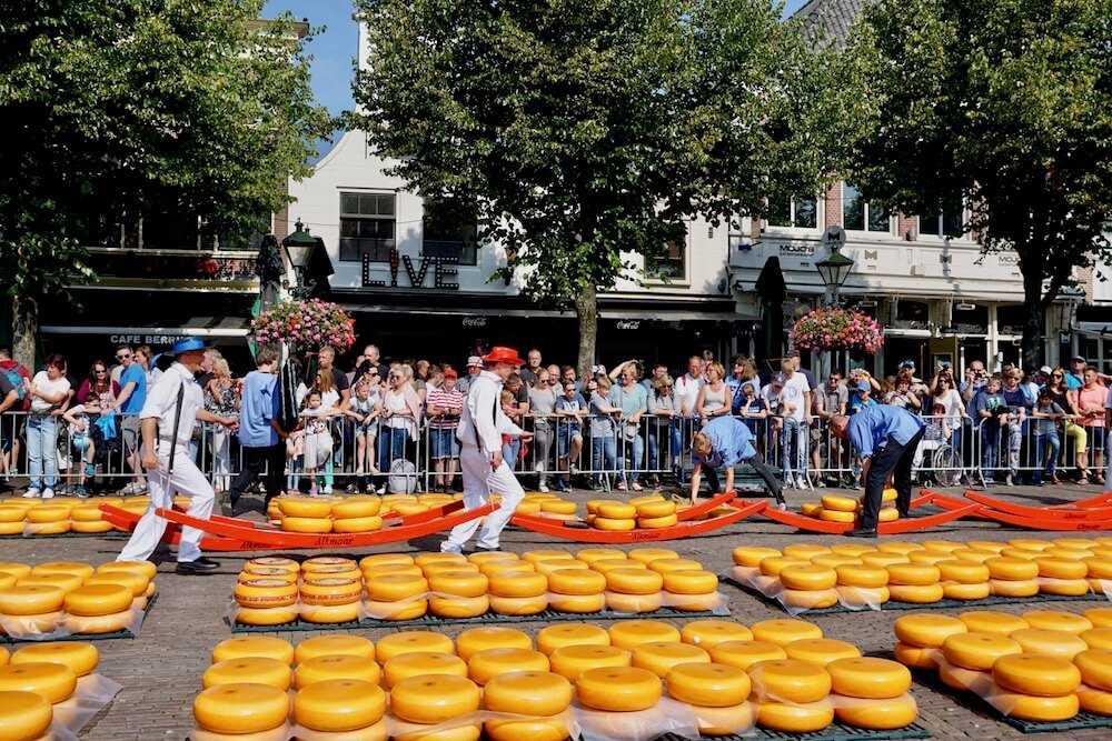 viaggio olanda del nord alkmaar mercato formaggio