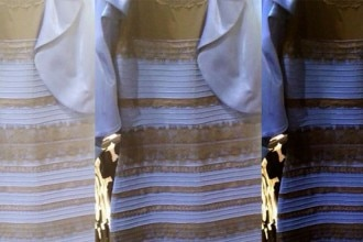 the-dress-colour