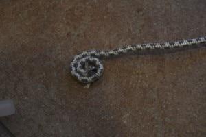 Diy: tovagliette in corda