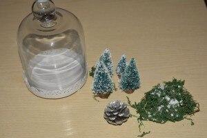 Materiale ambientazioni in campana di vetro
