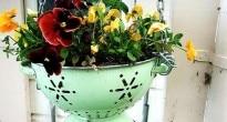 vasi per piante idee